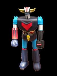 The Humanoid Robot