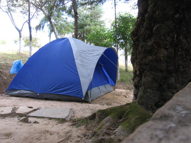 blue-camp-in-forest