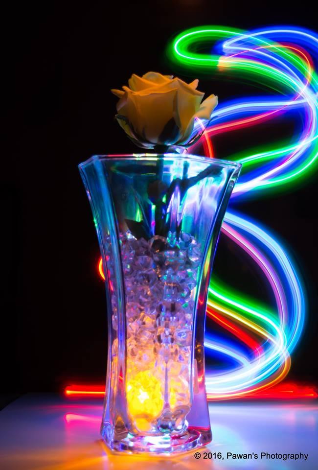 Rose-Glass-Light